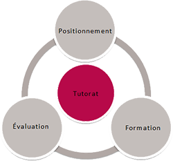 Auto-formation tutorée : Test, Formation, Evaluation